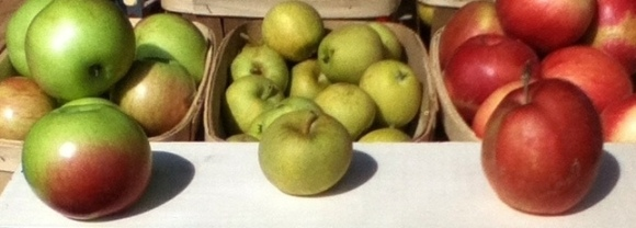 3 Apples Grav, Pitmaston, H.Nonesuch