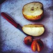Apple Tasting at Albemarle CiderWorks