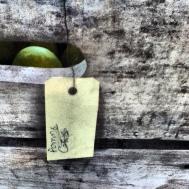 Pomme Gris