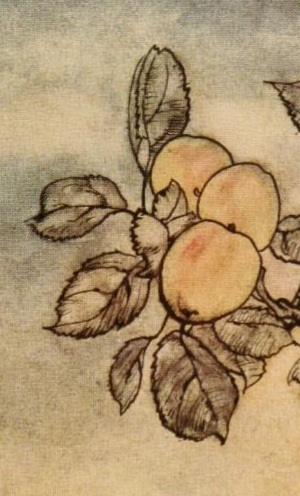 Rackham Lady's Apple