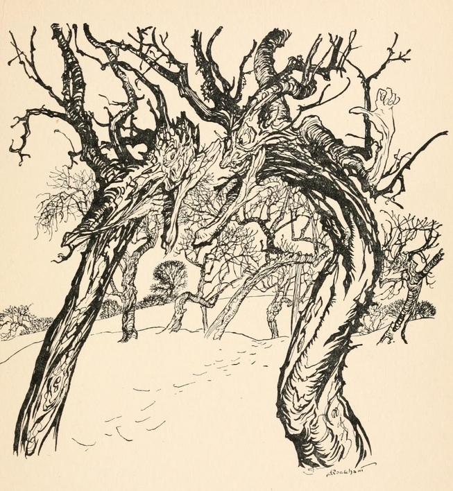 Rackham-Winter Trees